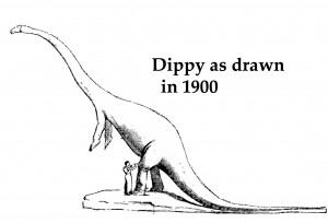 dippyup1904-copy