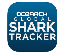 shark-tracker-app-icon