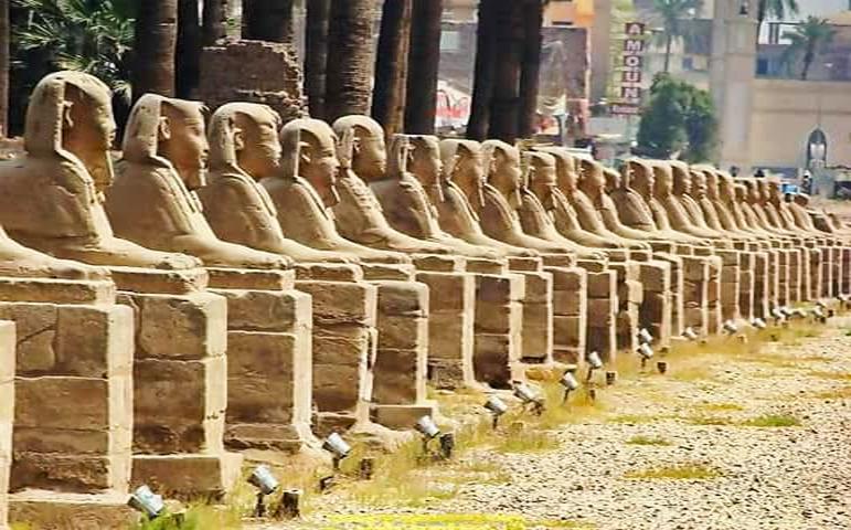 avenue-of-sphinx