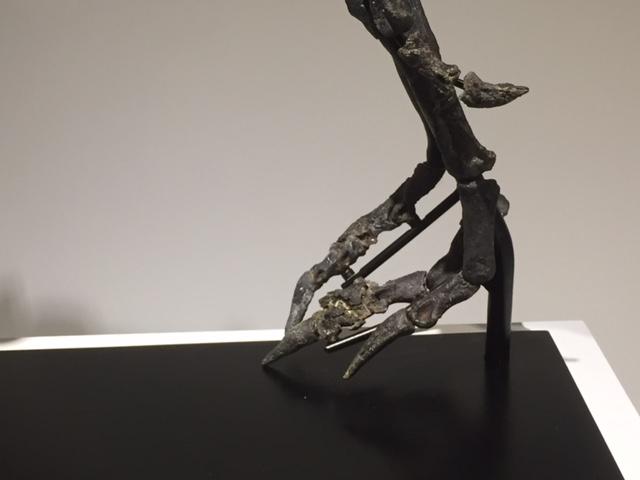 othnielosaurus2